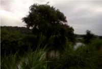 fiume-arrone-rm