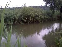 fiume-arrone-via-cecanibbio