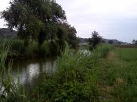 fiume-arrone