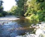 no-kill-fiume-ente-1
