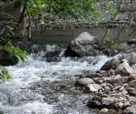no-kill-fiume-ente-2