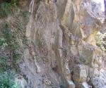 no-kill-fiume-ente-roccia