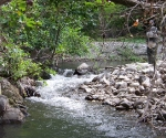 no-kill-fiume-ente
