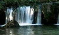 fiume-treja