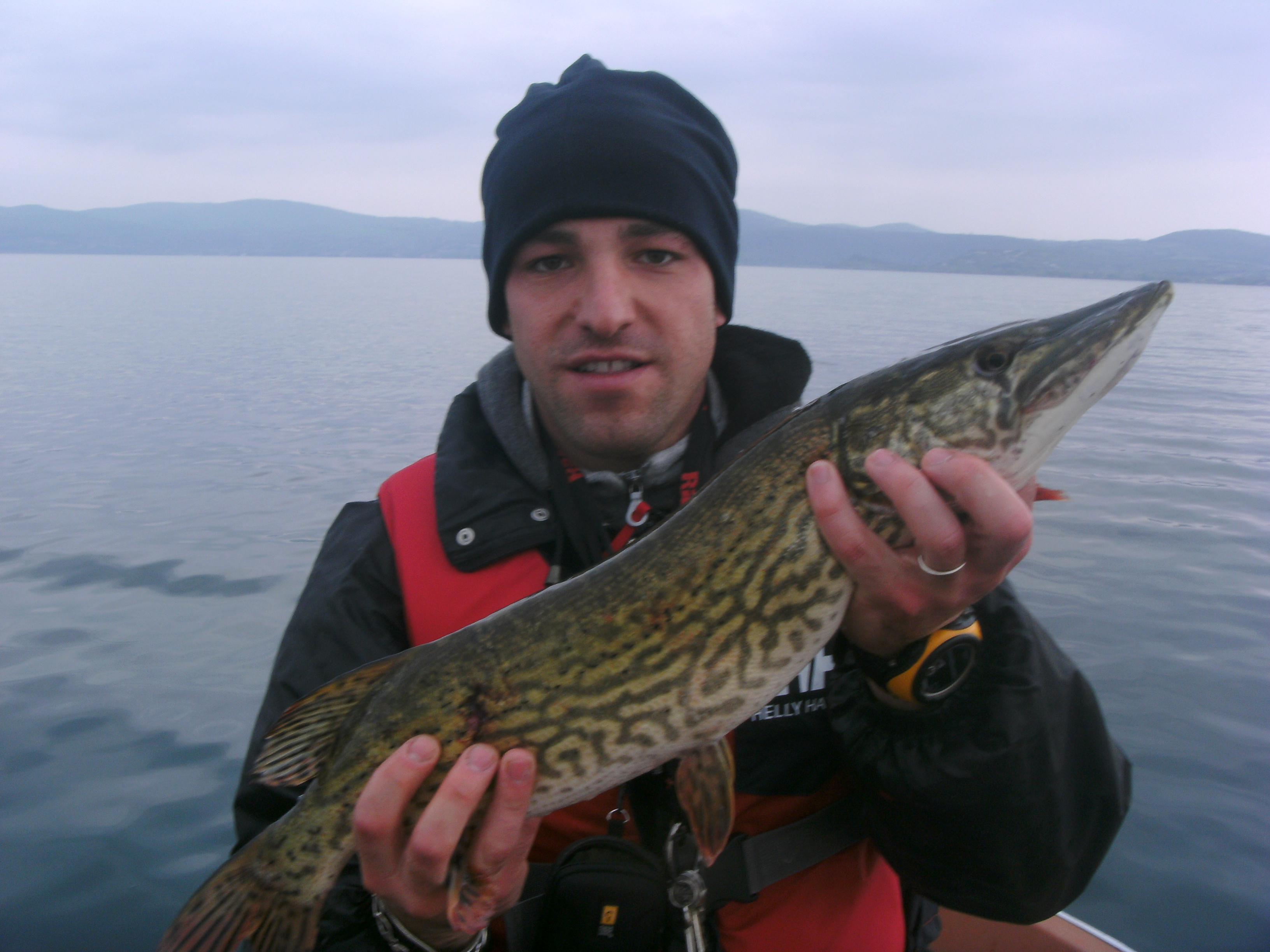 Luccio pescato al lago di Bracciano