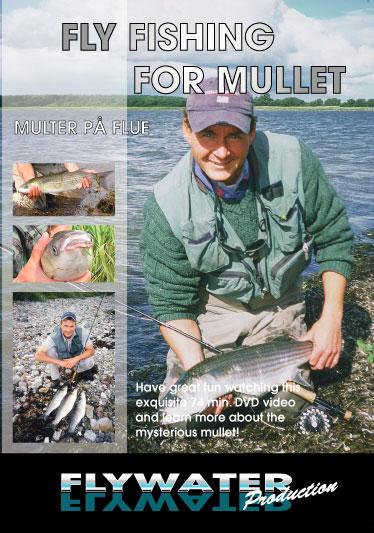 flyfishing for mullets